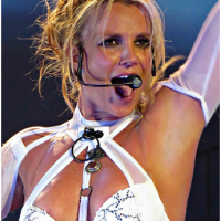 Fans of Britney Spears believe her vacation to Hawaii was staged and criticize her for repurposing old videos